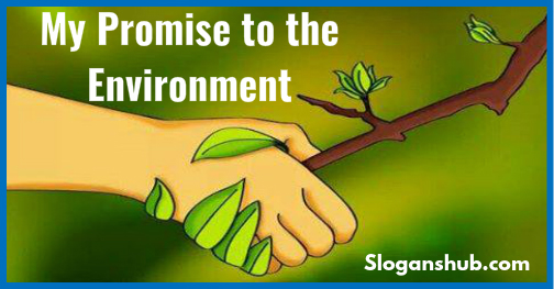 eco friendly environment essay What is being eco-friendly being eco-friendly or environmentally friendly is becoming more and more important you can see the term used in everything from job ads to dating profiles to even listings houses and vacation homes.